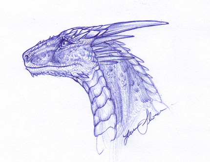 Head_Anyone__BIC_Pen_moment_by_Crazy_Dragon