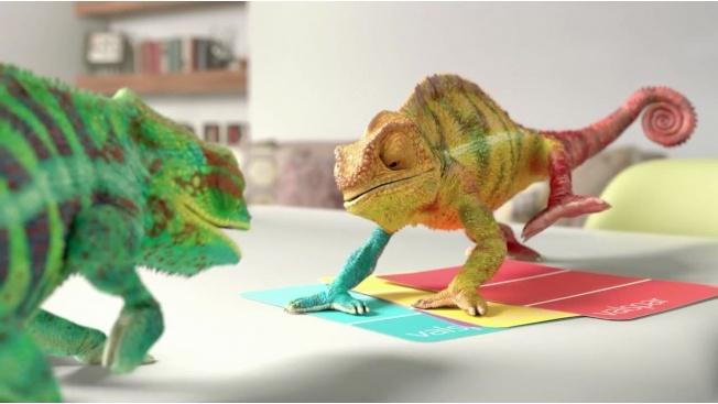 960x720_valspar_chameleons