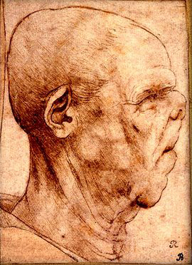 Grotesque Head Da Vinci