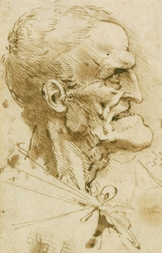 Grotesque Head VI Da Vinci